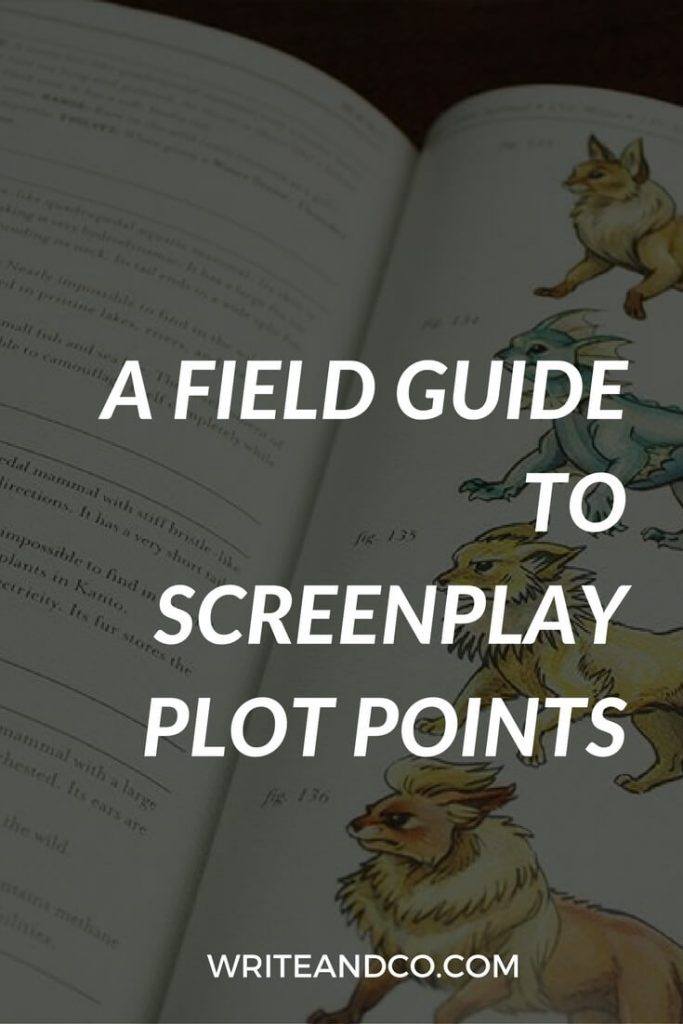 Screenplay Plot Points